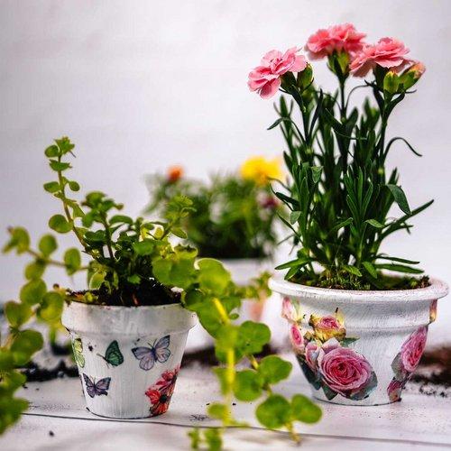 """Svoje ljetne terase, balkone, vrtove ili stol doma ukrasite teglicama koje smo samo za vas """"odjenuli"""" u novo ruho...."""